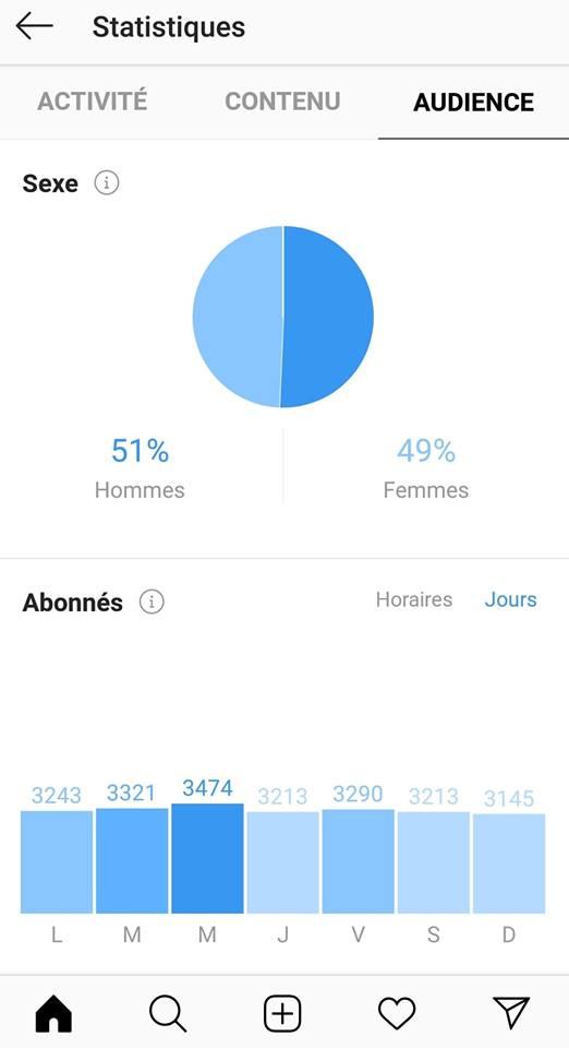 statistiques-instagram-audience