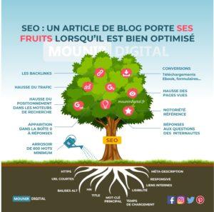 SEO : un article porte ses fruits lorsqu'il est bien optimisé - Mounir Digital