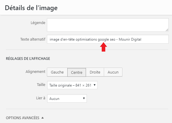 balise ALT optimisations seo google - Mounir Digital